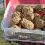 Trailways Oatmeal Cookies to Conquer Cancer