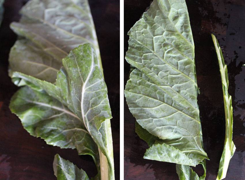 Collard Greens are the New Kale // Runaway Apricot